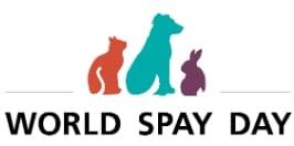 spay day logo