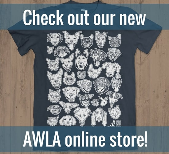 Animal Welfare League Of Arlington AWLA - What is a dealer invoice rocco online store