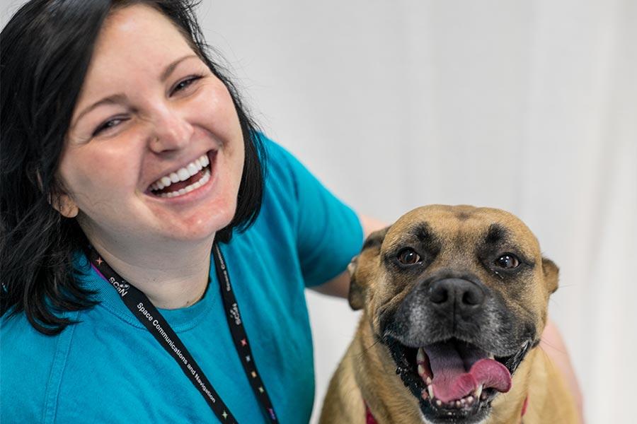 volunteer-dog